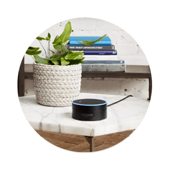 DISH Hands Free TV - Control Your TV with Amazon Alexa - Pageland, SC - HAROLD'S SATELLITE - DISH Authorized Retailer